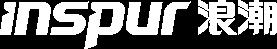 inspur logo